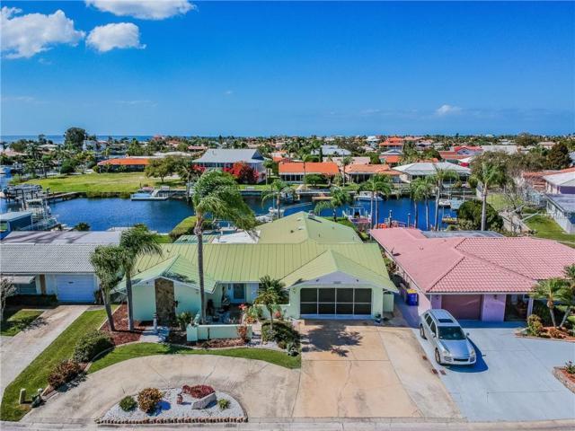 5001 Marlin Drive, New Port Richey, FL 34652 (MLS #W7809919) :: The Duncan Duo Team
