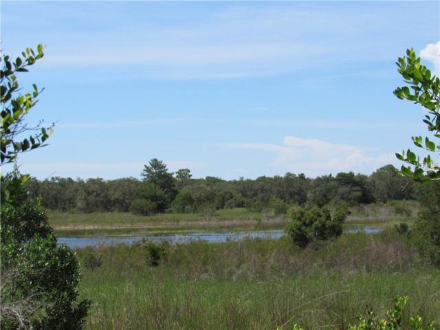 0 Wilderness Trail, Weeki Wachee, FL 34613 (MLS #W7809995) :: Griffin Group