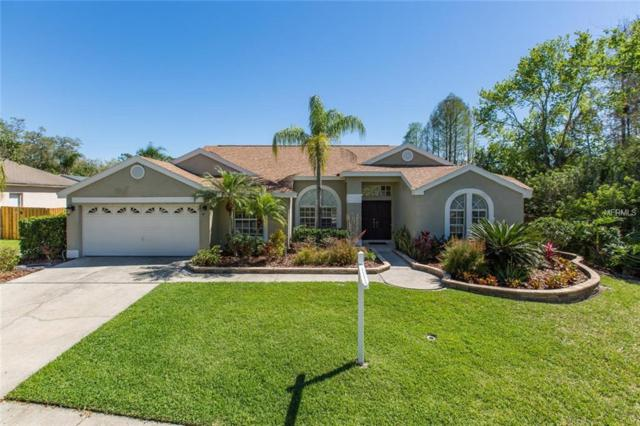 12308 Seabrook Drive, Tampa, FL 33626 (MLS #W7810292) :: The Duncan Duo Team
