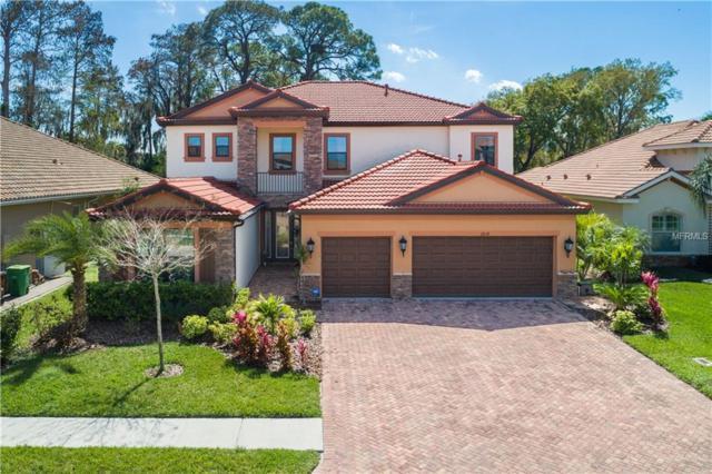 2614 Grand Lakeside Drive, Palm Harbor, FL 34684 (MLS #W7810313) :: Delgado Home Team at Keller Williams