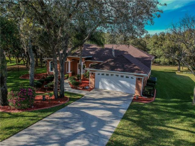 13925 Echo Mountain Drive, Hudson, FL 34667 (MLS #W7810407) :: Mark and Joni Coulter | Better Homes and Gardens