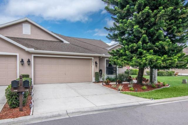 9633 Sweeping View Drive, New Port Richey, FL 34655 (MLS #W7810408) :: Cartwright Realty
