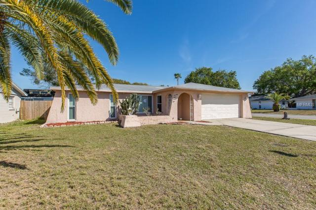7421 Mayfield Drive, Port Richey, FL 34668 (MLS #W7810413) :: The Duncan Duo Team