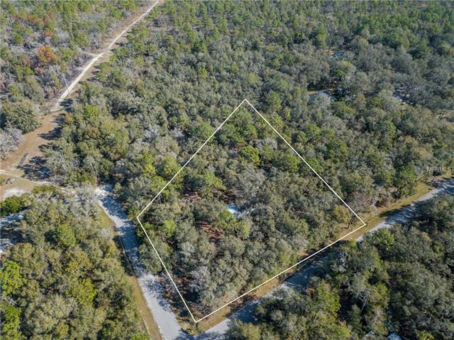24371 Evaline Street, Brooksville, FL 34601 (MLS #W7810533) :: Bridge Realty Group