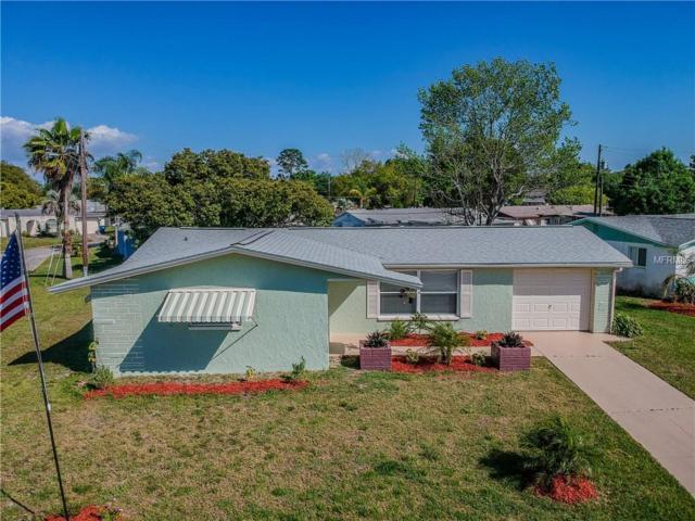 3242 Sanford Drive, Holiday, FL 34691 (MLS #W7810580) :: The Duncan Duo Team