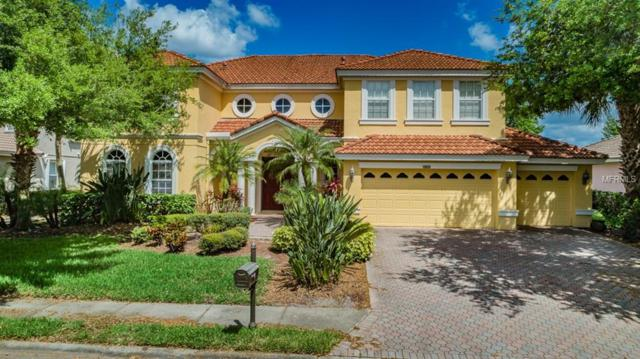 10601 Garda Drive, Trinity, FL 34655 (MLS #W7810621) :: Delgado Home Team at Keller Williams