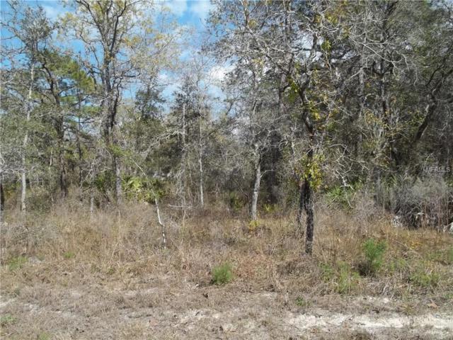 Goldfinch Road, Weeki Wachee, FL 34614 (MLS #W7810624) :: RE/MAX Realtec Group