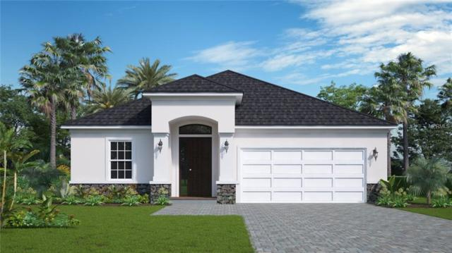 1112 E Boyer Street, Tarpon Springs, FL 34689 (MLS #W7810628) :: Jeff Borham & Associates at Keller Williams Realty