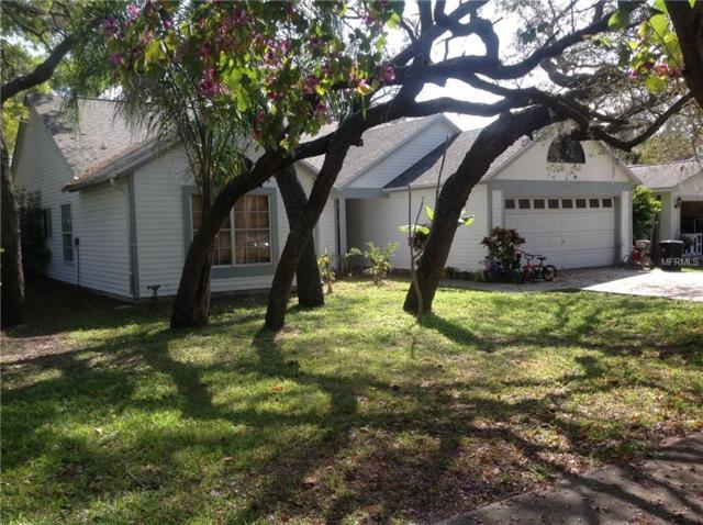 1098 Silkwood Avenue, Tarpon Springs, FL 34689 (MLS #W7810636) :: Gate Arty & the Group - Keller Williams Realty