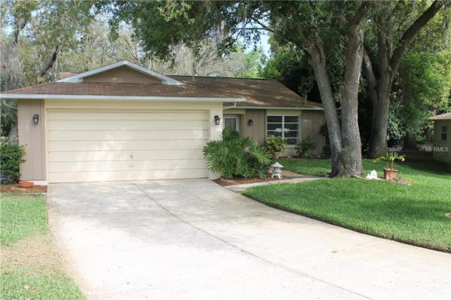 10546 Calico Loop, Port Richey, FL 34668 (MLS #W7810680) :: The Dan Grieb Home to Sell Team