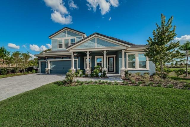 2910 Barbour Trail, Odessa, FL 33556 (MLS #W7810687) :: Jeff Borham & Associates at Keller Williams Realty