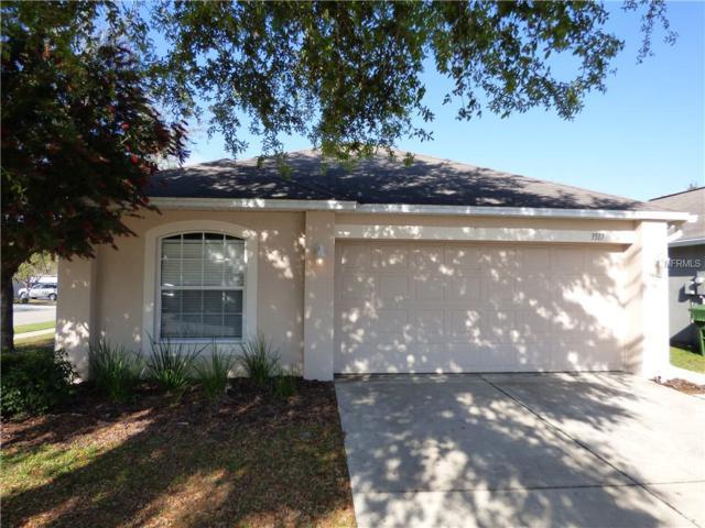 3517 Fyfield Court, Land O Lakes, FL 34638 (MLS #W7810690) :: Jeff Borham & Associates at Keller Williams Realty