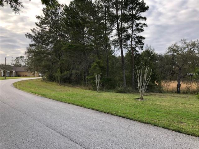 9612 Whisper Ridge Trail, Weeki Wachee, FL 34613 (MLS #W7810726) :: The Duncan Duo Team