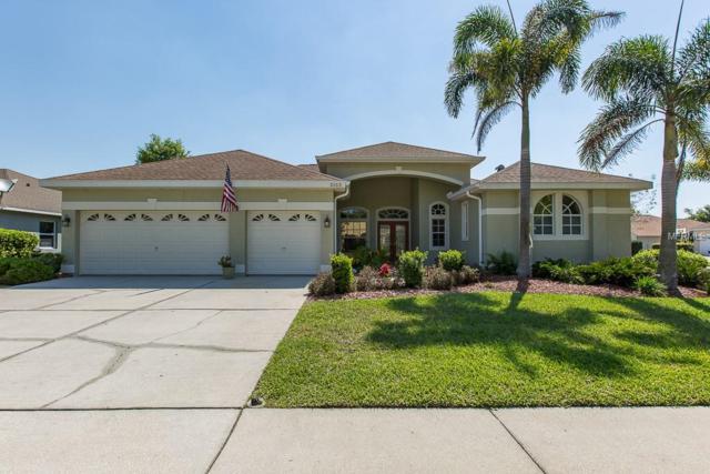 5103 Karlsburg Place, Palm Harbor, FL 34685 (MLS #W7810782) :: Delgado Home Team at Keller Williams