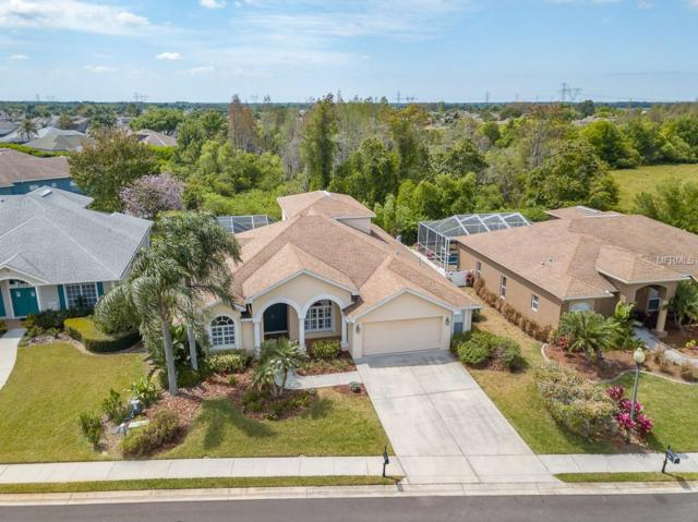 2141 Flameflower Court, Trinity, FL 34655 (MLS #W7810798) :: The Duncan Duo Team