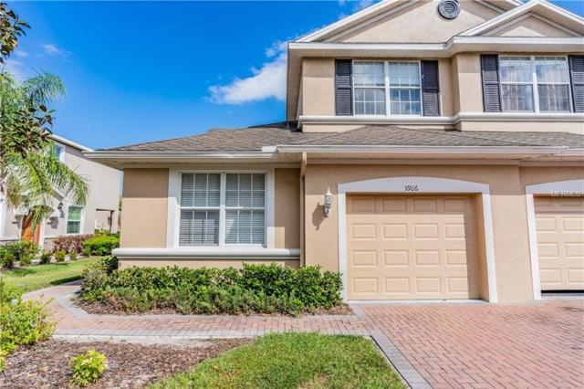 3906 Claybrook Drive, Wesley Chapel, FL 33544 (MLS #W7810799) :: Team 54