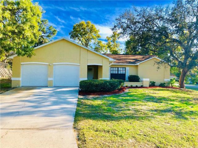 8199 English Elm Circle, Spring Hill, FL 34606 (MLS #W7810800) :: Dalton Wade Real Estate Group