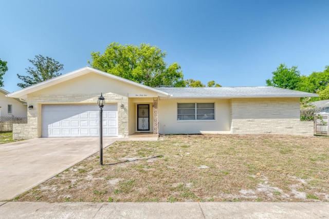 161 Sunward Avenue, Palm Harbor, FL 34684 (MLS #W7810811) :: Delgado Home Team at Keller Williams