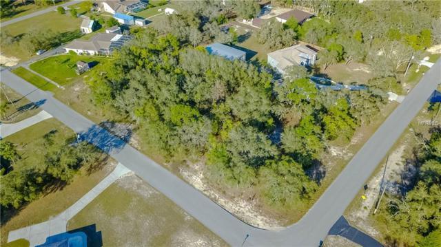 16247 Donney Moor Lane, Spring Hill, FL 34610 (MLS #W7810837) :: Cartwright Realty