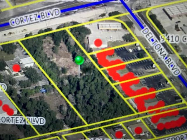 Cortez Boulevard, Spring Hill, FL 34613 (MLS #W7810859) :: Team 54