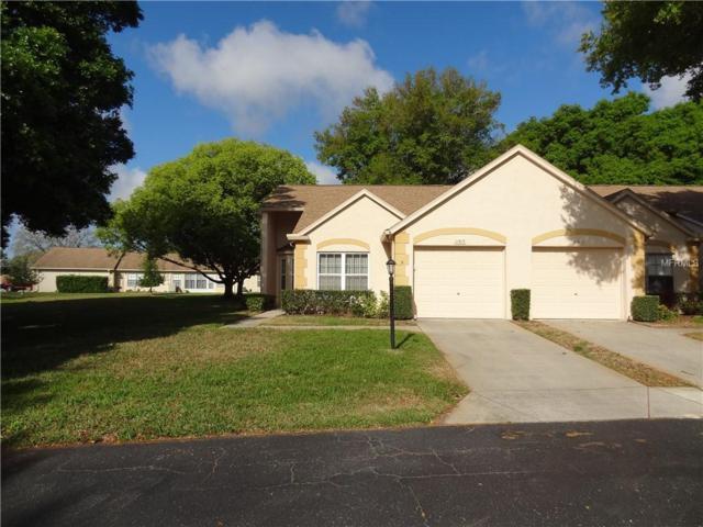 11513 Versailles Lane #1, Port Richey, FL 34668 (MLS #W7810877) :: Cartwright Realty