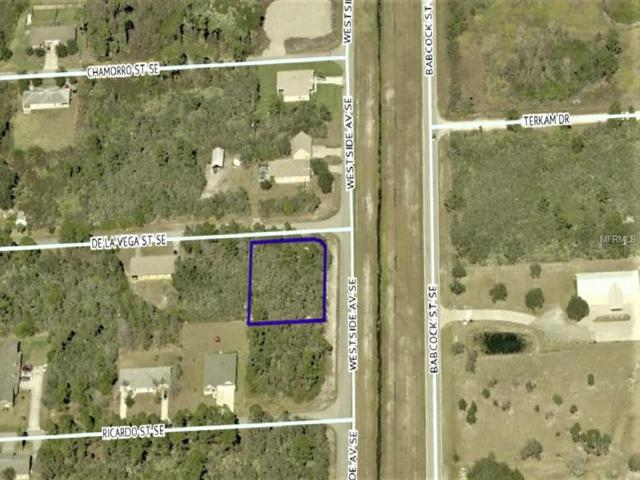 Corner Of De La Vega St. And West Side Ave.Se., Palm Bay, FL 32909 (MLS #W7810970) :: The Duncan Duo Team