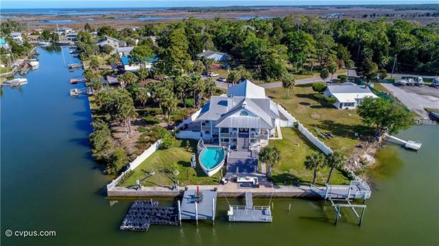 4138 Pine Dale Court, Hernando Beach, FL 34607 (MLS #W7811181) :: Baird Realty Group