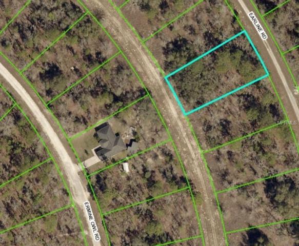 14247 Earline Road, Weeki Wachee, FL 34614 (MLS #W7811345) :: Baird Realty Group