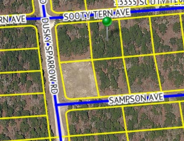 13336 Sooty Tern Avenue, Weeki Wachee, FL 34614 (MLS #W7811346) :: Baird Realty Group
