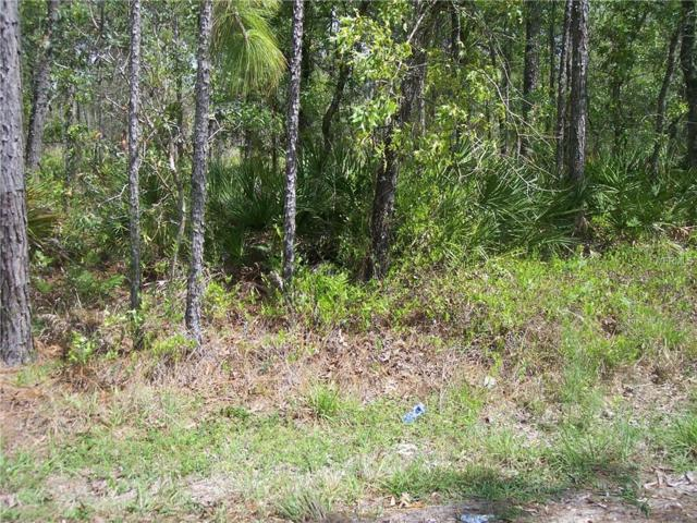 0 Necklace Warbler Avenue, Weeki Wachee, FL 34614 (MLS #W7811363) :: Burwell Real Estate