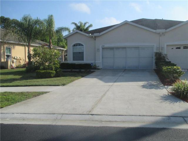 11317 Golf Round Drive, New Port Richey, FL 34654 (MLS #W7811454) :: Cartwright Realty