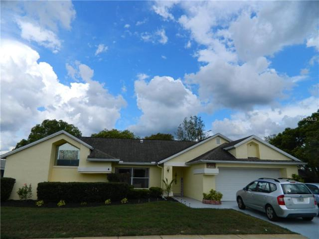 1242 Lansing Drive, Spring Hill, FL 34608 (MLS #W7811497) :: Team Bohannon Keller Williams, Tampa Properties