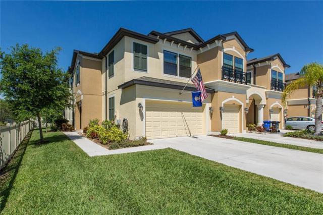 11502 Crowned Sparrow Lane, Tampa, FL 33626 (MLS #W7811518) :: Advanta Realty