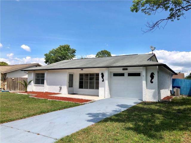 5048 Lillilea Lane, New Port Richey, FL 34653 (MLS #W7811524) :: RE/MAX Realtec Group