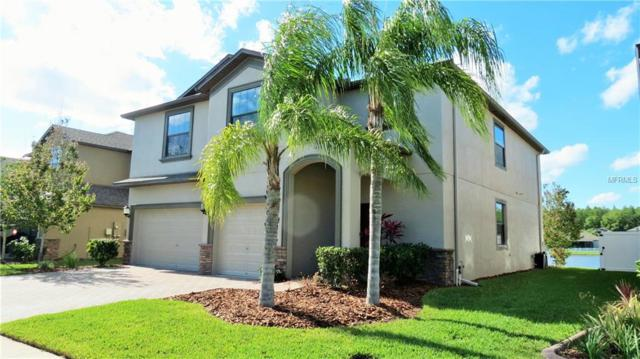 12375 Eagle Chase Way, Trinity, FL 34655 (MLS #W7811553) :: RE/MAX CHAMPIONS