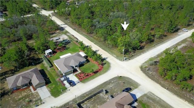 15224 Scaup Duck Avenue, Weeki Wachee, FL 34614 (MLS #W7811556) :: Baird Realty Group