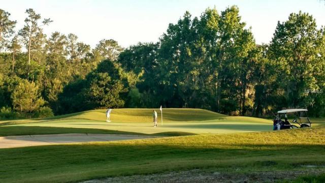 4261 Southern Valley Loop, Brooksville, FL 34601 (MLS #W7811625) :: The Duncan Duo Team