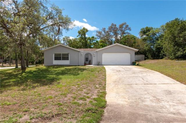 6436 Clearwater Drive, Spring Hill, FL 34606 (MLS #W7811636) :: Burwell Real Estate