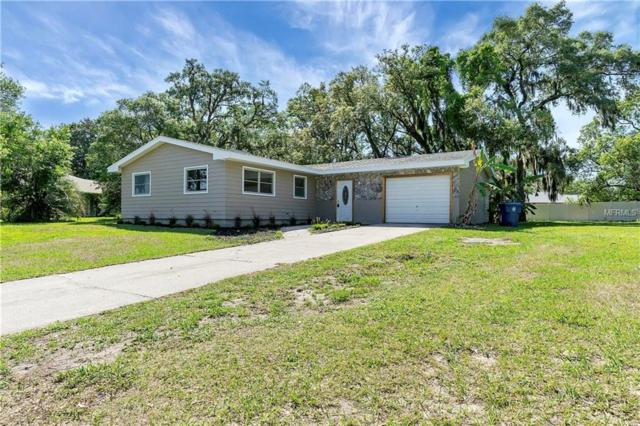9032 Jena Road, Spring Hill, FL 34608 (MLS #W7811651) :: Burwell Real Estate