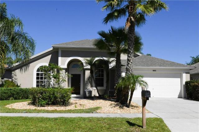 18005 Misty Blue Lane, Tampa, FL 33647 (MLS #W7811690) :: Team Bohannon Keller Williams, Tampa Properties