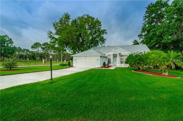 6101 Hidden Trail Court, New Port Richey, FL 34655 (MLS #W7811695) :: RE/MAX CHAMPIONS