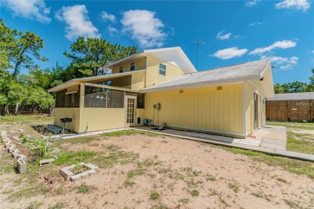 12425 Beagle Road, Hudson, FL 34667 (MLS #W7811706) :: The Duncan Duo Team
