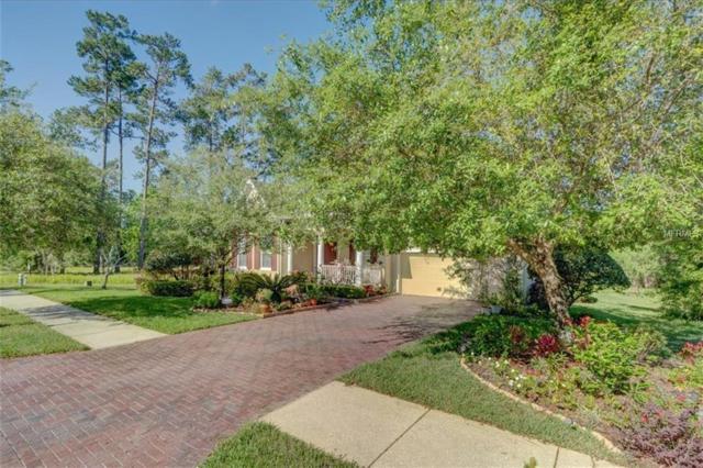5795 Summit View Drive, Brooksville, FL 34601 (MLS #W7811707) :: Cartwright Realty