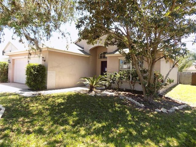 24436 Summer Nights Court, Lutz, FL 33559 (MLS #W7811726) :: Andrew Cherry & Company