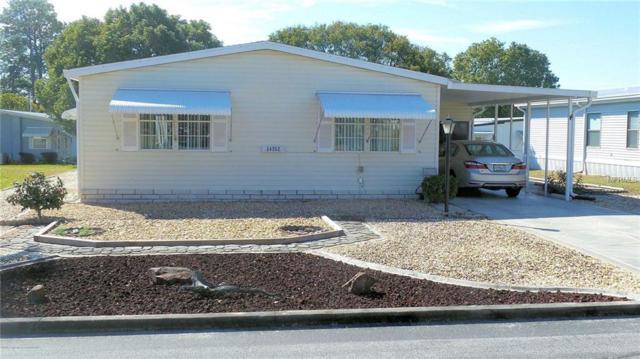 14352 Nectarine Street, Brooksville, FL 34613 (MLS #W7811769) :: The Duncan Duo Team