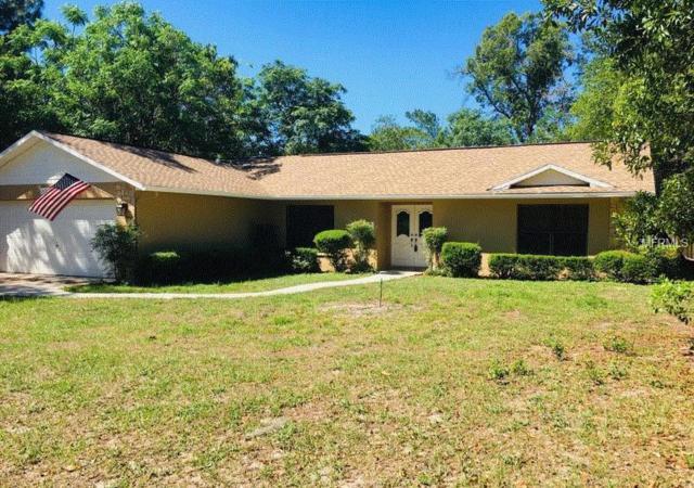 11360 Sagamore Street, Spring Hill, FL 34609 (MLS #W7811782) :: Delgado Home Team at Keller Williams