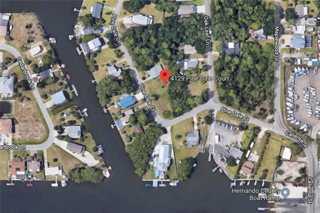 4129 Pine Dale Court, Hernando Beach, FL 34607 (MLS #W7811794) :: The Duncan Duo Team