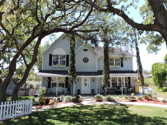 219 Galaxy Avenue, Spring Hill, FL 34606 (MLS #W7811825) :: Delgado Home Team at Keller Williams