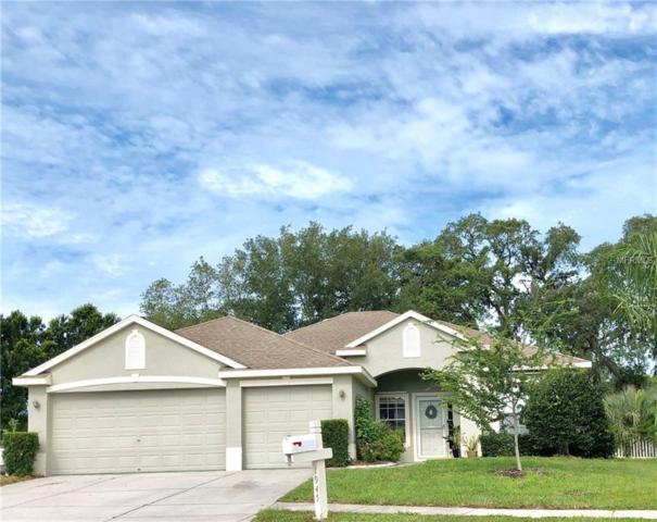 1945 Fern Ridge Court, Holiday, FL 34691 (MLS #W7811907) :: Team Bohannon Keller Williams, Tampa Properties