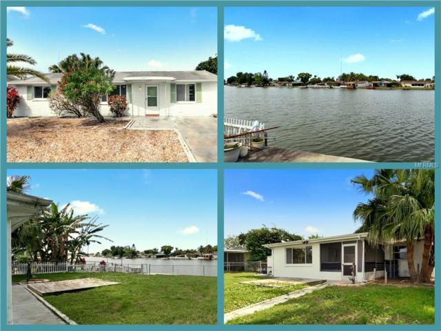 2215 Riomar Drive, Holiday, FL 34691 (MLS #W7812079) :: Team Bohannon Keller Williams, Tampa Properties